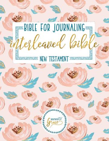 2018.9.25 ITG BFJ New Testament Cover